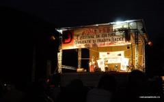 dac-fest-2012_0019.JPG