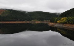 lacul-oasa_0014.JPG